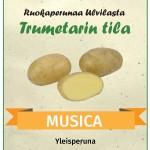 musica_peruna_Trumetarin_tila
