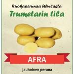 afra_jauhoinen_peruna_trumetarin_tila